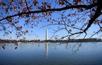 Autumn scenery on lakeside of Tidal Basin in Washington D.C