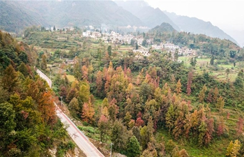 Scenery of Gesuo valley in SW China's Guizhou