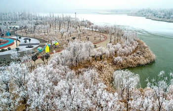 Rime scenery in Yuncheng City, north China's Shanxi