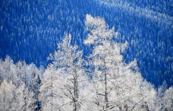 Winter scenery of Keketuohai scenic spot in NW China's Xinjiang