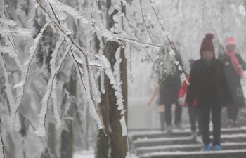 Snow-covered Huangshizhai Scenic Area in Zhangjiajie, C China