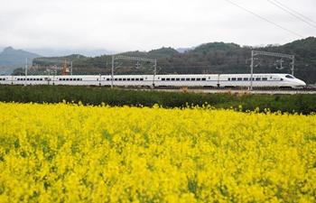 High speed train moves past cole flower fields in Guizhou