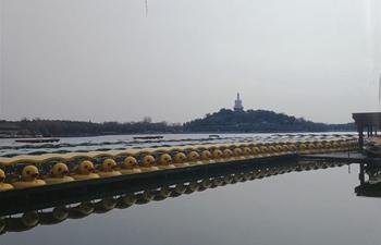 In pics: Beihai Park in Beijing