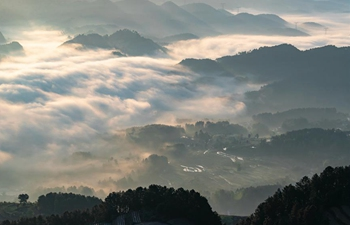 In pics: fog-shrouded village in SW China's Chongqing