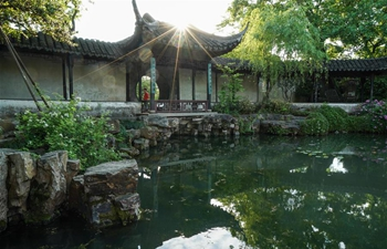 Scenery of gardens in Suzhou, E China's Jiangsu