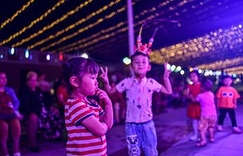 In pics: night fair in NE China's Xinjiang