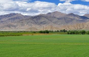 Scenery of Xigaze in southwest China's Tibet