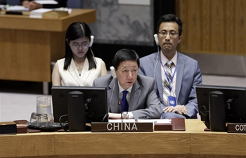 Chinese envoy asks for political solution in Syria
