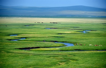 Pasture scenery in East Ujimqin Banner, N China's Inner Mongolia