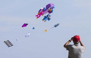 2019 Toronto WindFest Fun Fly held in Canada