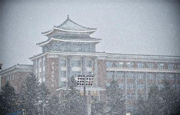 Snowfall hits Changchun