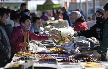 A glimpse of Spring Festival market in Ningxia