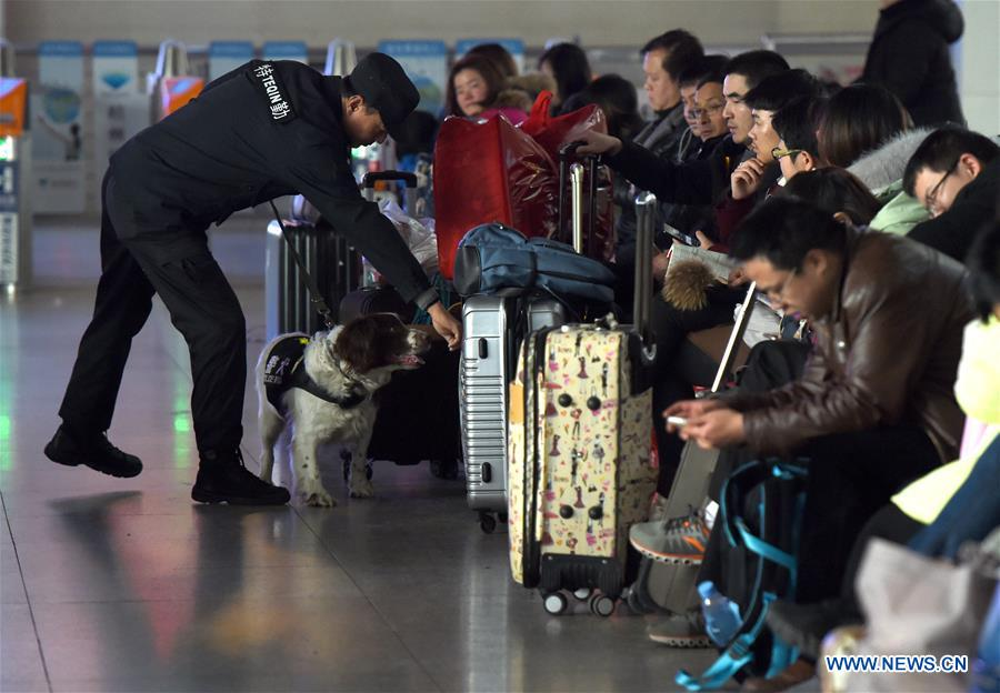 Trainer Yang Naiwen and police dog Tiehu check passengers' luggage at the Hefei Railway Station in Hefei, capital of east China's Anhui Province, Jan. 24, 2017. Many police dogs are on duty during China's Spring Festival travel rush between Jan. 13 and Feb. 21. This is the 7th time for Tiehu, an 8-year-old sniffer dog, to serve the travel rush around the Spring Festival, which falls on Jan. 28 this year. (Xinhua/Guo Chen)