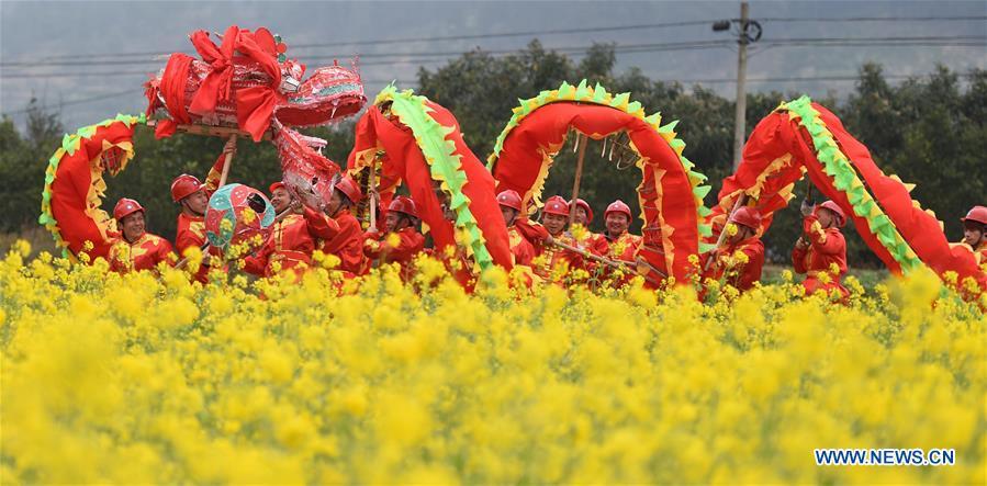 #CHINA-GUIZHOU-YUQING-DRAGON DANCE (CN)