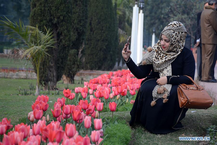 PAKISTAN-LAHORE-TULIP-FLOWERS