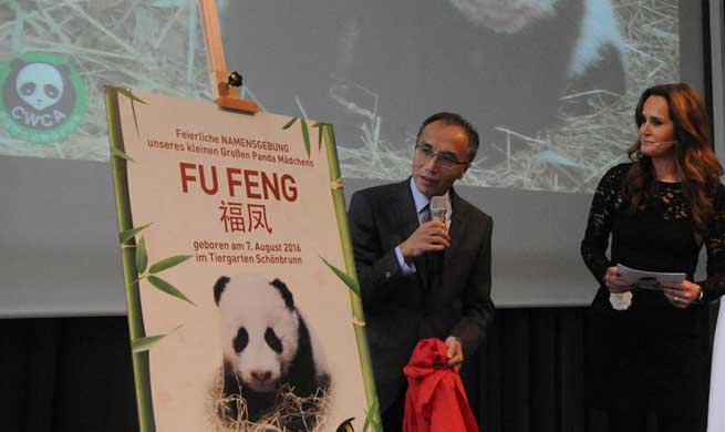 Twin panda cubs in Austria officially given names at ceremony