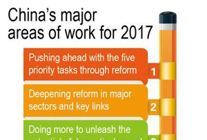 Graphics: China's major areas of work for 2017