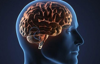 U.S. death rates from Alzheimer's disease up 55 pct in 15 years: report