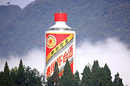 Chinese liquor brand Moutai sees fast growth along Belt and Road