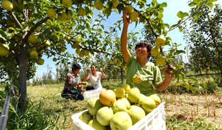 People's Daily article explains China's approach to poverty battle