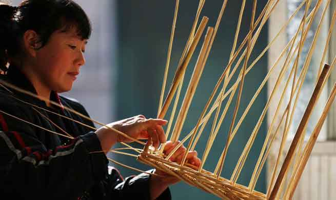 Willow manufacturing develops in China's Shandong