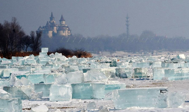 Ice cubes collected for int'l ice and snow festival in NE China