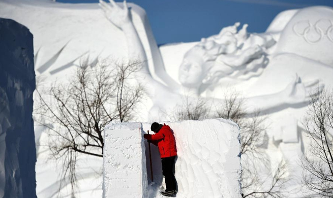 Highlights of Harbin Int'l Snow Sculpture Competition