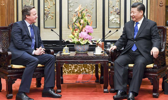 Xi calls for deeper cooperation with Britain under Belt & Road Initiative