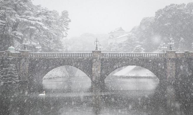 Tokyo hit by heavy snow, gov't calls for public vigilance