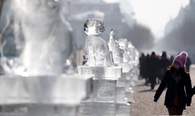 Lowest temperature of Harbin drops to minus 35 degrees Celsius