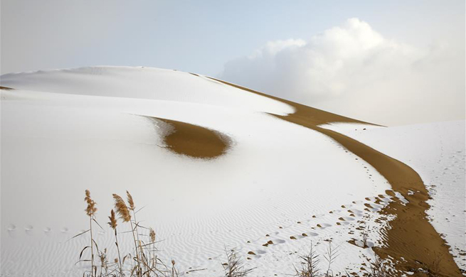 Snow falls on Taklimakan Desert in NW China's Xinjiang