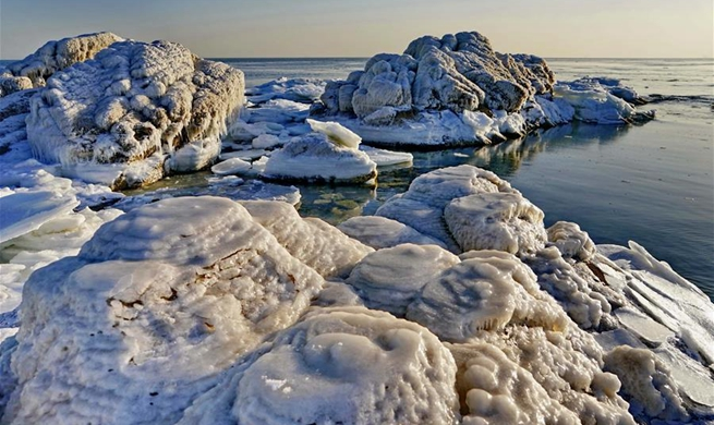 Sea ice shown in Qinhuangdao, N China's Hebei