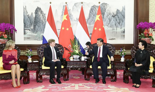 Chinese president meets Dutch king, calls for closer cooperation on B&R construction
