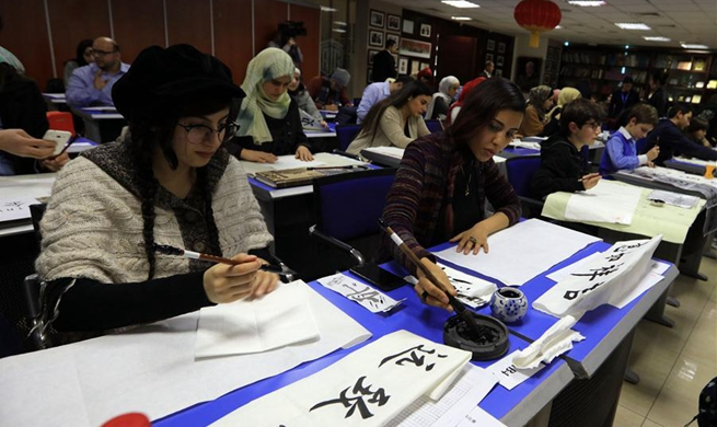 """Ambassador's Cup"" Chinese calligraphy competition held in Jordan"