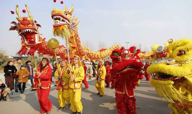 Various activities held across China to celebrate Spring Festival