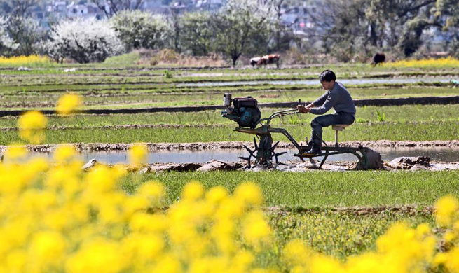 In pics: farming during early spring across China