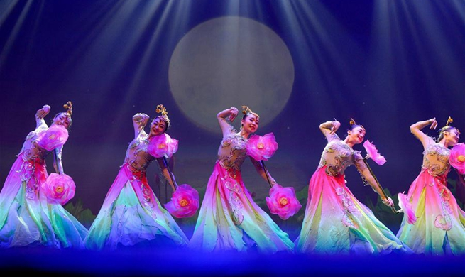Artists give performance in Auckland to greet Chinese New Year