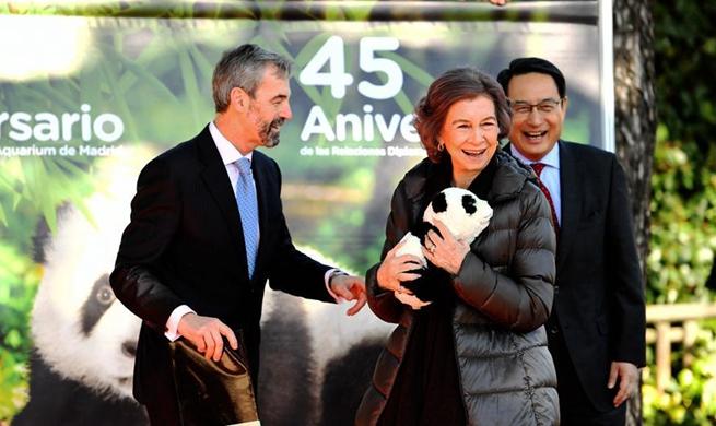 China, Spain extend giant panda loan agreement