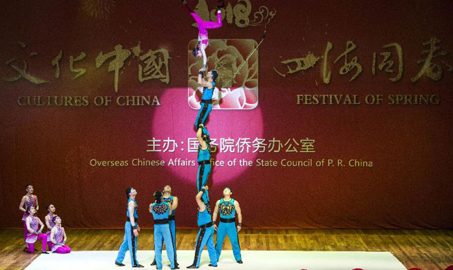 """Cultures of China, Festival of Spring"" gala held in Rio de Janeiro"