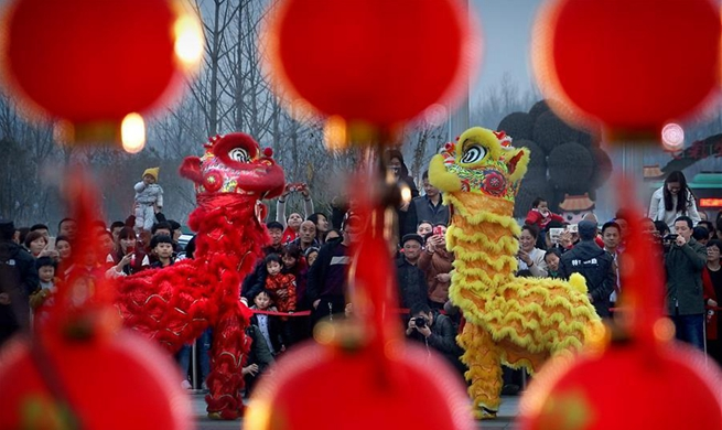 Lantern fair held in Zhengzhou, central China's Henan