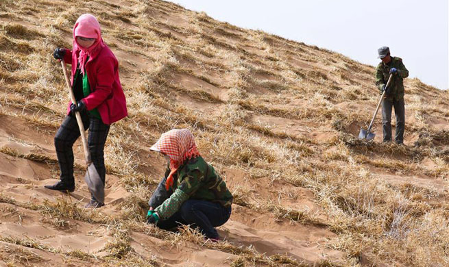 People fight against desertification in NW China's Gansu