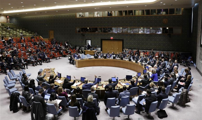 Security Council extends mandate of UN mission in DRC