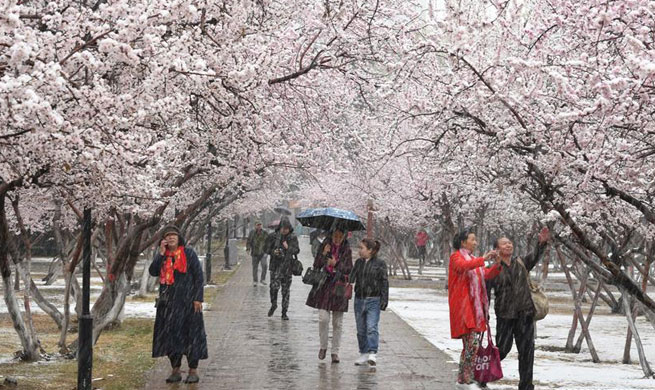 Cold front brings snowfall to Hohhot in early spring