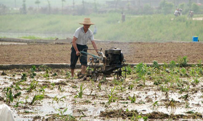 Farmers work across China
