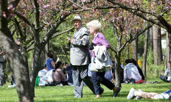 People enjoy cherry blossom at Herastrau Park in Bucharest, Romania