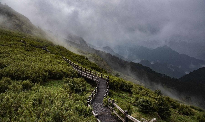 Scenery of Shennongjia National Park in China's Hubei