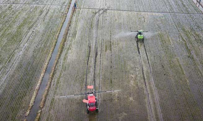 Unmanned sprayer, harvester, rice transplanter work in field in E China