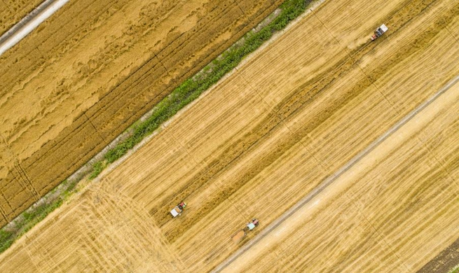 In pics: farmers work across China