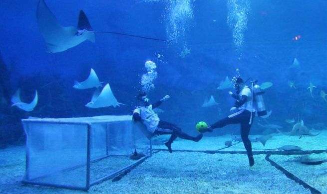 Divers play football underwater at ocean park in east China's Shandong