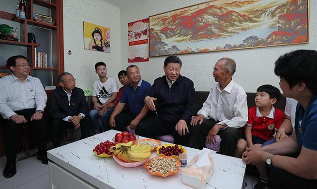 Xi calls for efforts to boost innovation ability in economic and social development